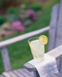 Lemonade Sitting on Arm Rest